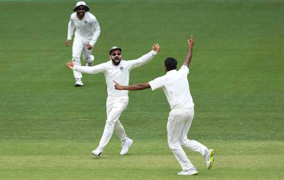 virat-kohli-celebrates-indias-win-over-australia-data